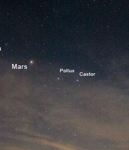 ستاره پلوکس