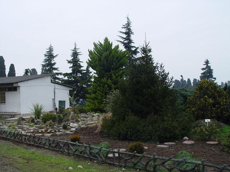 oldest garden