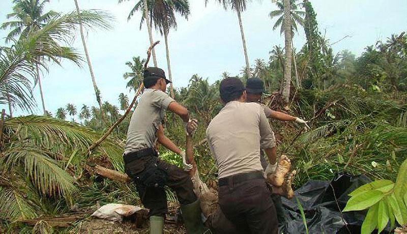 اندونزی؛ آتشفشان و سونامی قربانی میگیرد