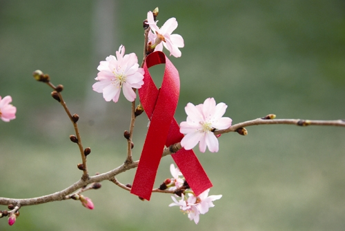 شکوفه - روبان - ایدز