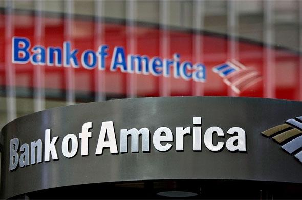 bank of america against wikileaks