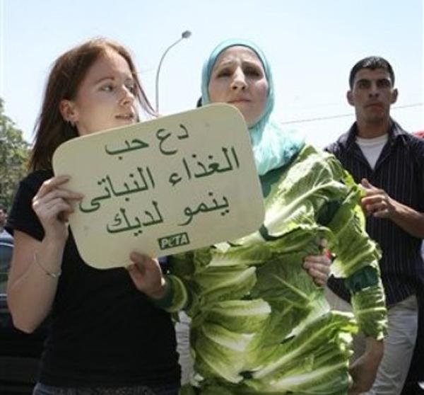 پلیس اردن زن کاهویی را در هنگام اعتراض دستگیر کرد