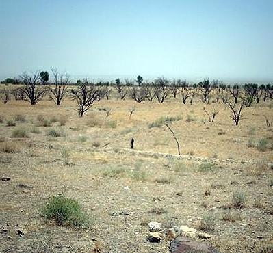 بیش از 140 رشته قنات در شهرستان گناباد خشکید