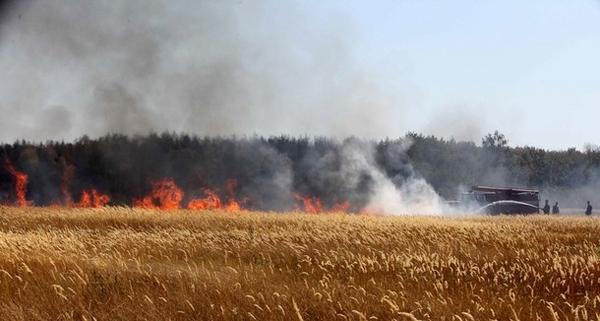 آتش در جنگلهای روسیه