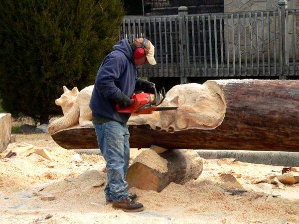 یک هنرمند و  تنههای درختها