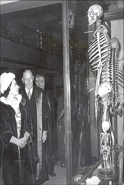 ملکه انگلیس در کنار اسکلت غول ایرلند