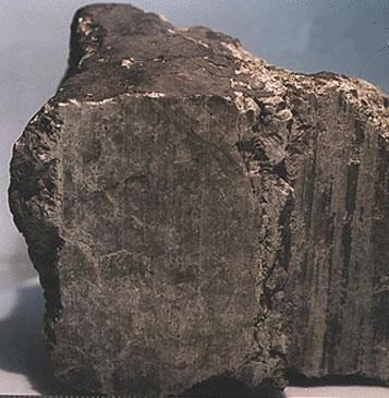قطعه شهاب سنگ مریخی ALH84001