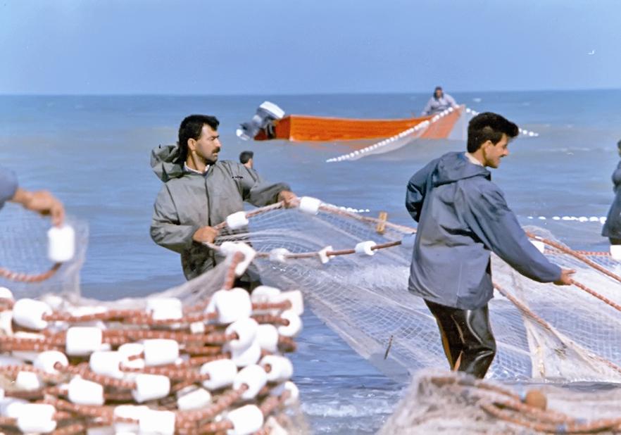 آلودگی دریا در کمین ماهی و ماهیگیر