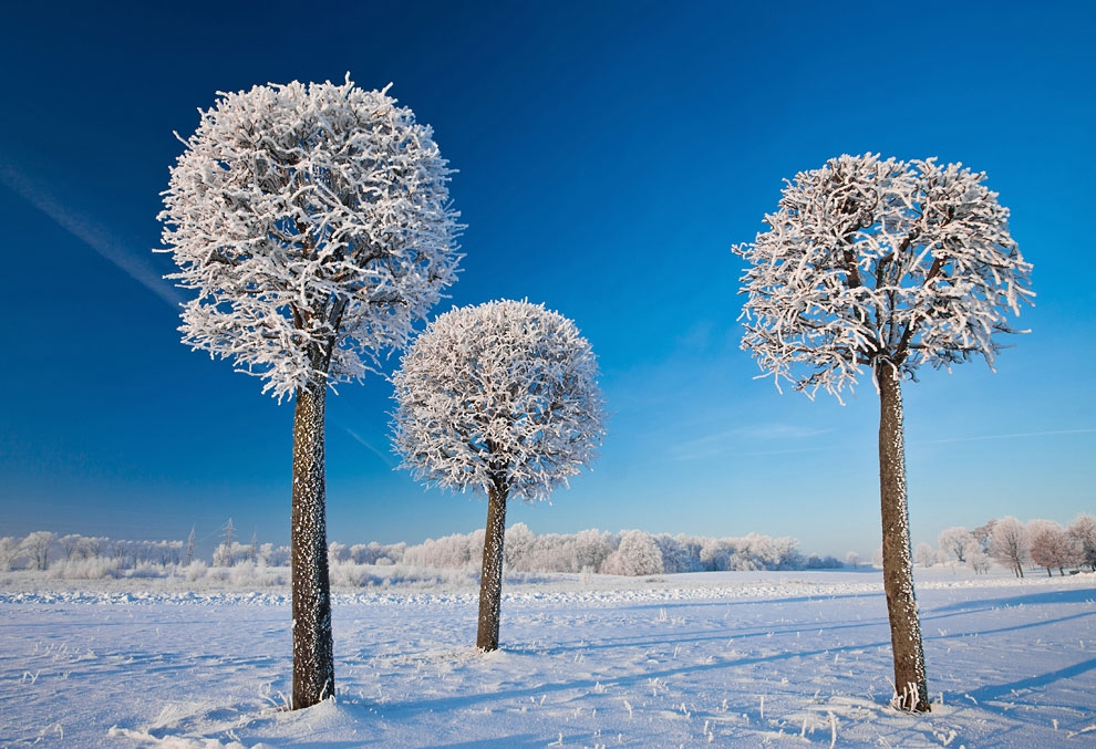 Winter is extremely beautiful in Lithuania