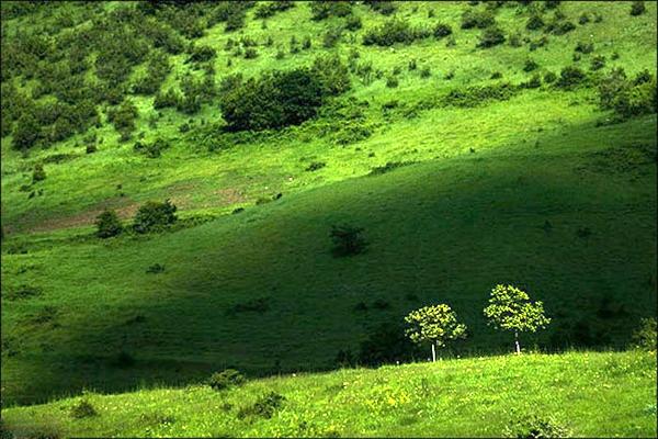 آشنایی با جنگلهای ارسباران - آذربایجان شرقی