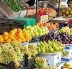 تولید برق از ضایعات میادین میوه و ترهبار