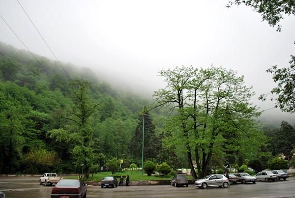 آشنایی با جنگل ناهارخوران - گلستان