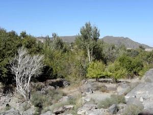 روستای تمندان - سیستان و بلوچستان