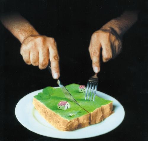 طرح - کشاورزی