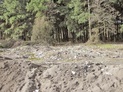 ساحل - دفن زباله