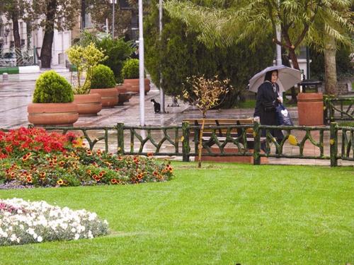 تهران - پارک - فضای سبز
