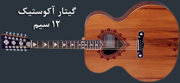 12 String Acoustic guitar: