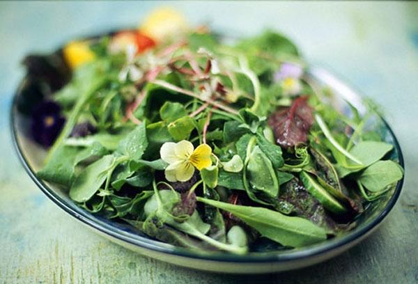 برخی از غذاهای انرژیزا و نشاط آور را بشناسید