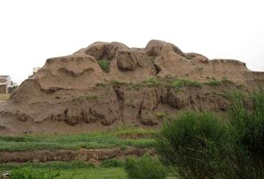 آشنایی با میمون قلعه - فارس