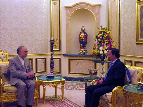 دیدار وزیر امور خارجه با پادشاه برونئی