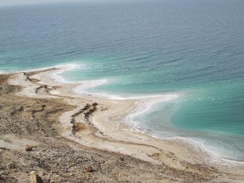 شوری آب اقیانوسها