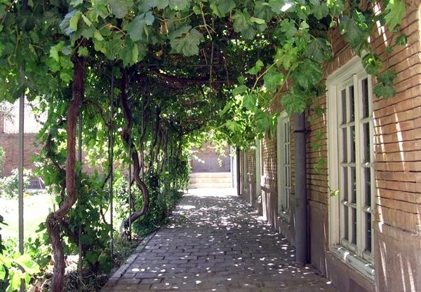 آشنایی با خانه گنجهایزاده - آذربایجانشرقی
