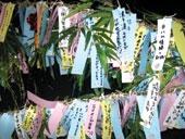 رشته پرندههای کاغذی با آرزوی سلامتی و عمر طولانی برای اعضای خانواده به بامبو آویزان میشود.