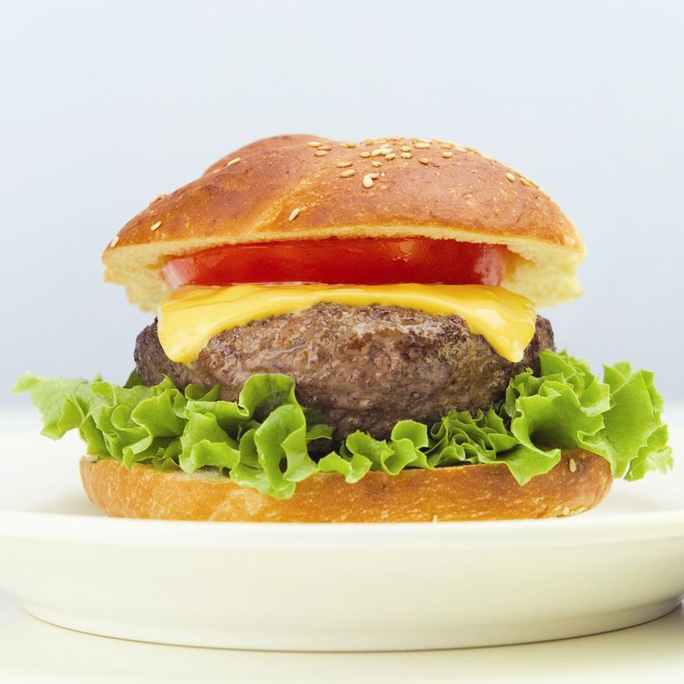 موادغذایی - ساندویچ