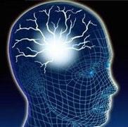 سلولهای مغز در اثر رژیم غذایی نادرست خودخوری میکنند