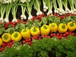شستشوی سبزیجات را جدی بگیریم