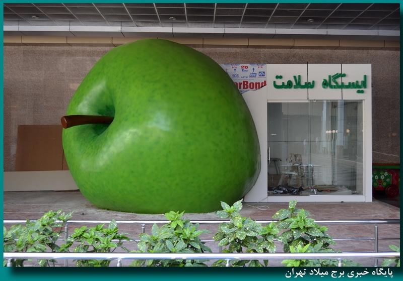 خانههای سلامت شهرداری تهران می تواند الگوی سایر کلانشهرهای دنیا باشد