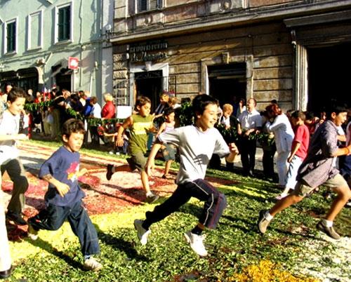 جشنواره فرش گل