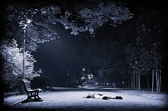 شب - پارک