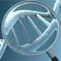 شناسایی 50 ژن جدید عقب ماندگی ذهنی