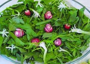 مصرف سبزیجات و پیشگیری از سرماخوردگی