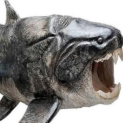 نخستین حیوان دندان دار