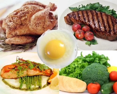 رژیم سرشار از پروتئین باعث لاغری میشود