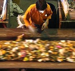 افزایش یکهزار تنی ظرفیت خطوط پردازش زبالههای تهران