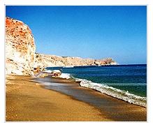 مرجان - ساحل جزیره ابوموسی