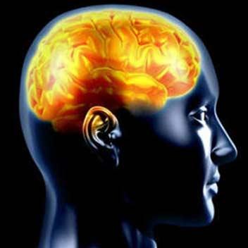 آغاز اختلال حافظه از دهه سوم زندگی