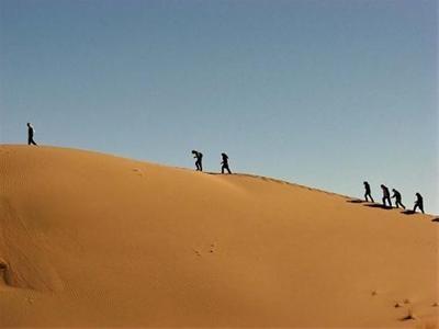 واژگونی مینی بوس گردشگران در نزدیکی کویر مصر