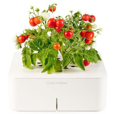 پرورش گیاهان با گلدان هوشمند