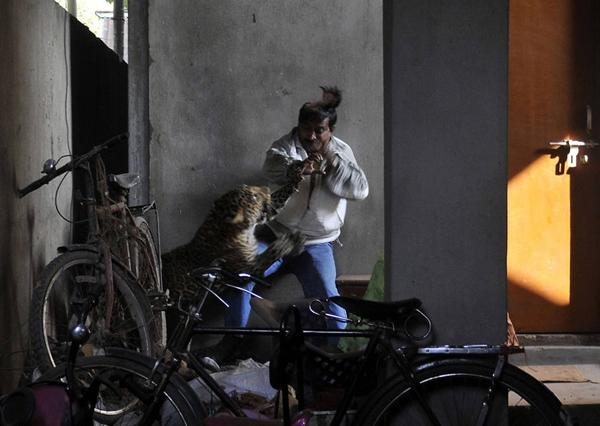 برترین عکسهای خبرگزاری فرانسه در سال 2012
