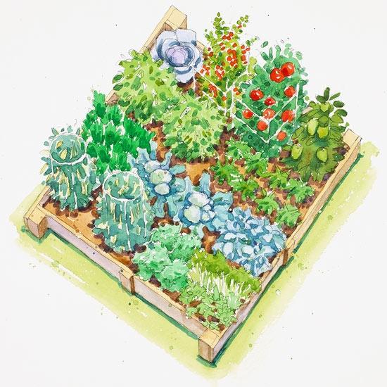 نمای باغچه