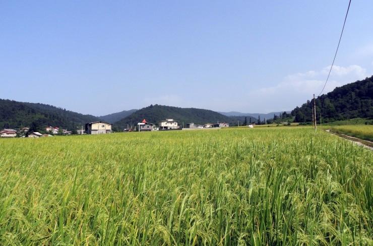 آشنایی با روستای قلعه گردن - مازندران