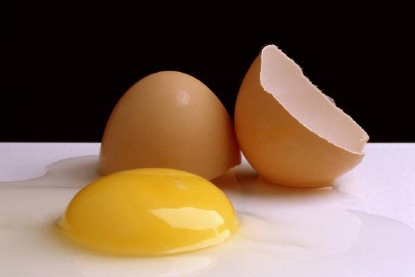 تخممرغ