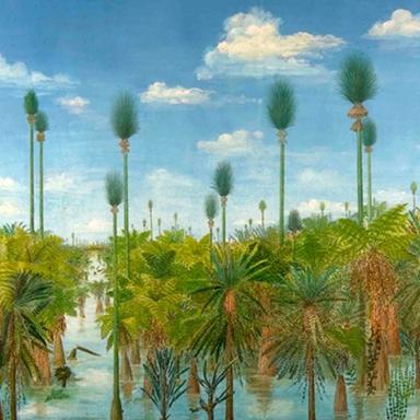 جنگل پمپی