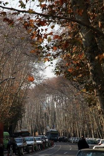 خیابان ولیعصر(عج) در فهرست آثار معنوی جهان