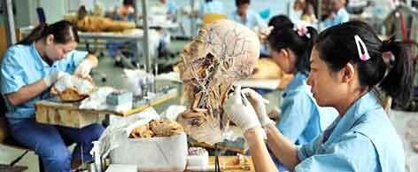 ساخت انسان پلاستیکی