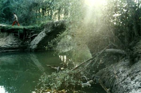 آشنایی با پل خشتی نیاکو (کوچک پرده) - گیلان